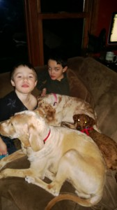 Willow, Daisy Mae and Milo hanging with the boys.
